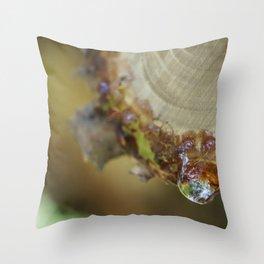 Dew Drop Throw Pillow