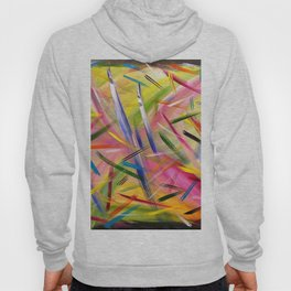 Color play Hoody