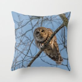 End of day Barred Owl Throw Pillow