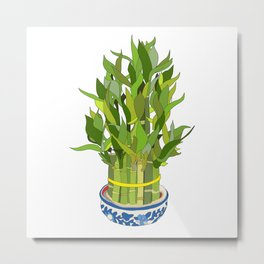 Lucky Bamboo in Porcelain Bowl Metal Print
