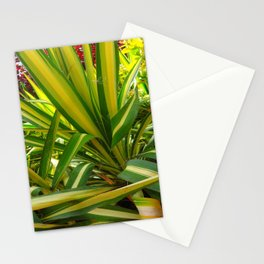 TROPICAL GREEN VARIEGATED AGAVE'S ART Stationery Cards