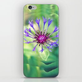 Searching For Sanity iPhone Skin