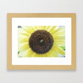 Bee Business Framed Art Print