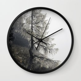 Mystic Forest in Slovenia 02 Wall Clock