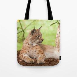 Lynx Lynx Tote Bag