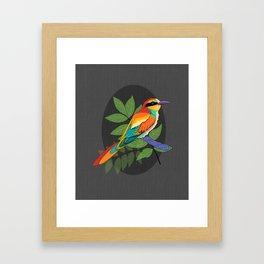 Colorful Bee Eater Bird Portrait Framed Art Print