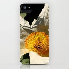 Sitting The Sun iPhone Case