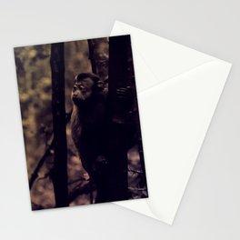 Old Monkey Stationery Cards