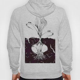 small section of the earth Hoody