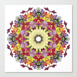 Abundantly colorful orchid mandala 1 Canvas Print