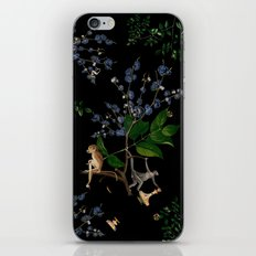 Monkey World: Apy and Vinnie iPhone & iPod Skin