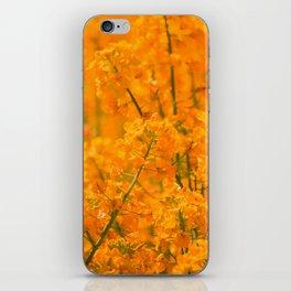Orange Rapeseed iPhone Skin
