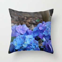 Last days of bloom Throw Pillow