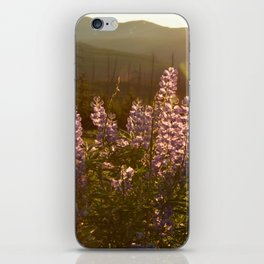 sunset lupin iPhone Skin