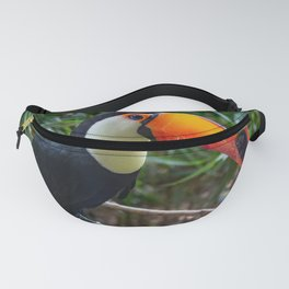 A toucan laid on a tree branch in the forest Fanny Pack