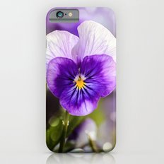 Purple Pansy iPhone 6 Slim Case
