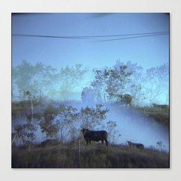 Experiment no. 314 Canvas Print