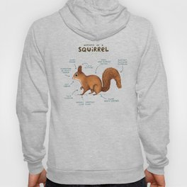 Anatomy of a Squirrel Hoodie