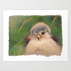 Nestling Art Print