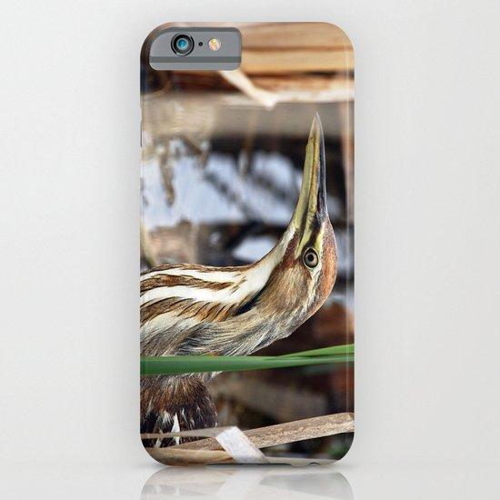 American Bittern - Take Two iPhone & iPod Case