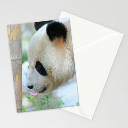 Panda20170601_by_JAMFoto Stationery Cards
