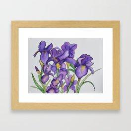 Pretty Purple Petals Framed Art Print
