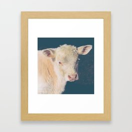 Calf Framed Art Print