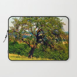 Yet another old tree Laptop Sleeve