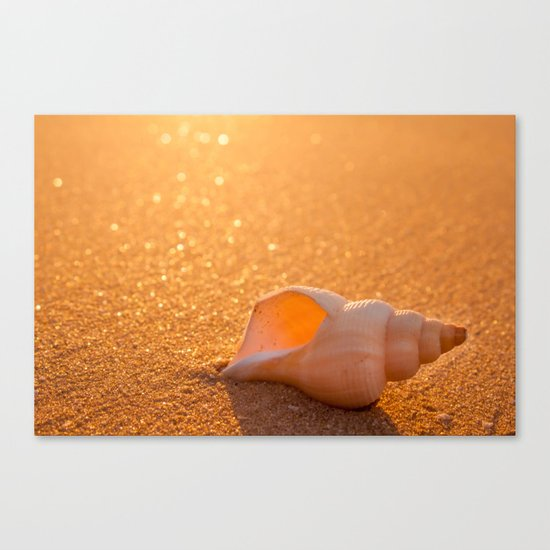 Golden lights Canvas Print