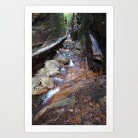 Flume Gorge Art Print