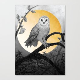 Golden Owl Canvas Print