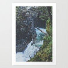 Little Qualicum Falls VII Art Print