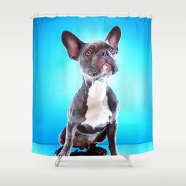 Super Pets Series 1 - Super Bailey Shower Curtain