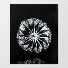 Invertina Canvas Print