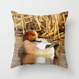 Eurasian Wigeon at the Pond Throw Pillow