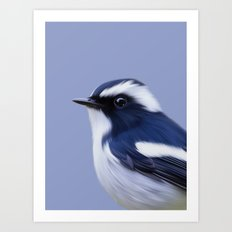 Pied Flycatcher Art Print