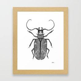 Titan Beetle Framed Art Print