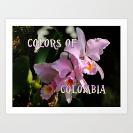 Colors of Colombia Art Print