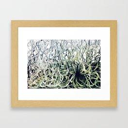 Dis Green Framed Art Print