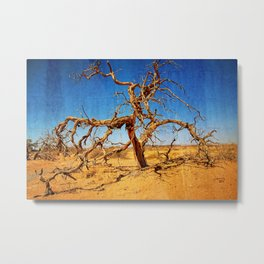 PhotoArt Metal Print