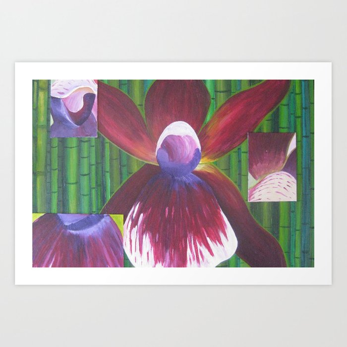 The Many Faces of Orchids Art Print