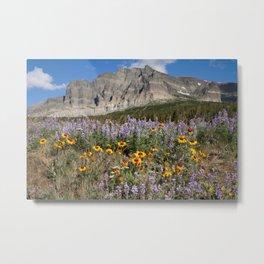 Wildflowers - Glacier National Park Metal Print