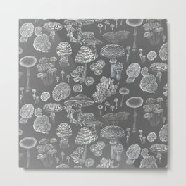 Mycology Grey Metal Print