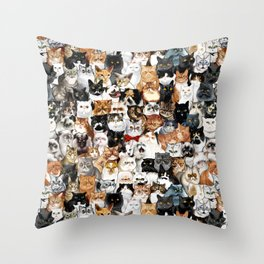 Catmina Project Throw Pillow