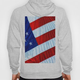 Flag of the United States of America Hoody