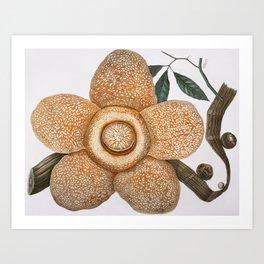 Rafflesia Arnoldii Art Print