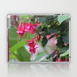 Fucsia Dream Laptop & iPad Skin