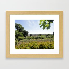 A Conclave's Vineyard Onlooking  The City of Rome Framed Art Print
