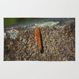 Cliffhanger Rug
