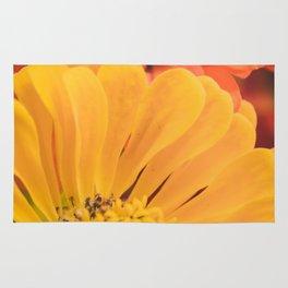 Floral 17 Rug